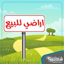 ارض للبيع - 920م - اوراق رسمية - القدس - الشياح