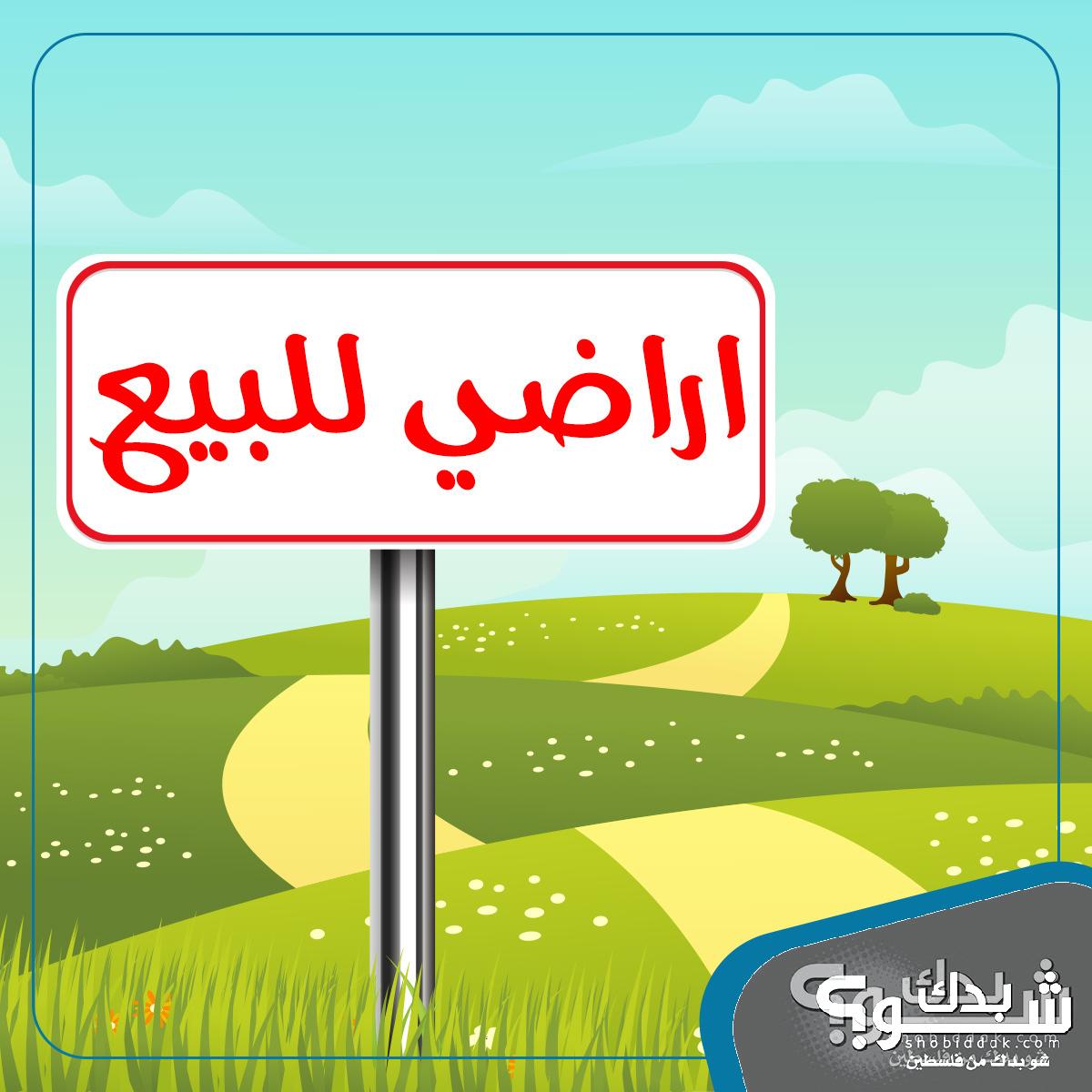 أرض لبناء اسكان ومخازن (ج)  شارع الجامعه عين مصباح - 865 م